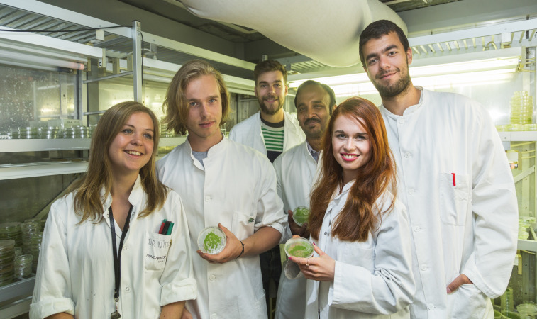 iGEM Team 2015  SpaceMoss